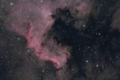 Nebulosa Nord America  NGC 7000