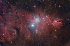 Nebulosa Cono NGC 2264 S Monocerotis e l'Albero di Natale