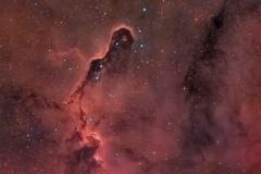 Nebulosa Proboscide d'Elefante vdB 142 e IC 1396