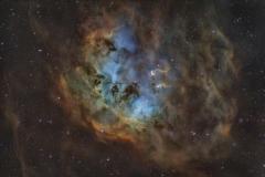 Nebulosa Girino  IC 410