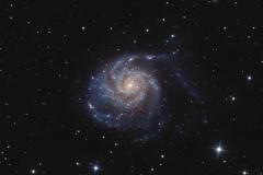 Galassia m 101