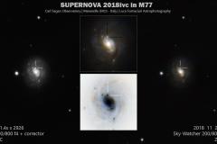 Supernova nella galassia M 77