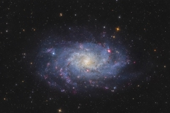 Galassia del Triangolo M 33 o NGC 598