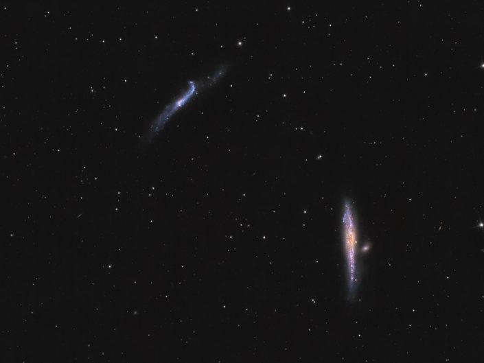 Galassia Balena e galassia Hokey Stick fotografate con Sky-Watcher newton 200/1000 e Canon 600D