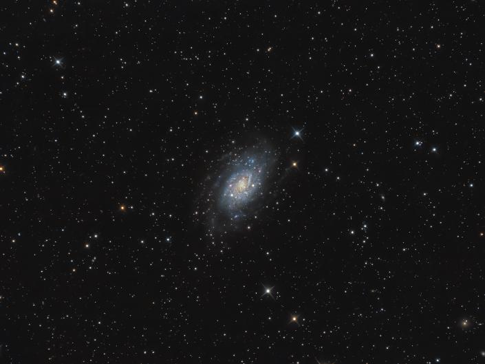 Galassia NGC 2403 nella costellazione della Giraffa si trova una grande galassia distante più di 8 milioni di anni luce da qui. SW 200/800 | AZEQ6-GT Optolong L-pro ASI 294 Remotizzato con Cartes du Ciel ed elaborato con Pixinsight e Photoshop.