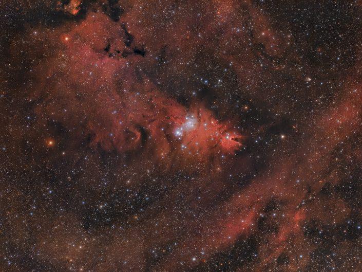 La zona molecolare di Monoceros è molto estesa e contiene un ammasso aperto di stelle blu al centro, oltre alla famosa nebulosa Cono.