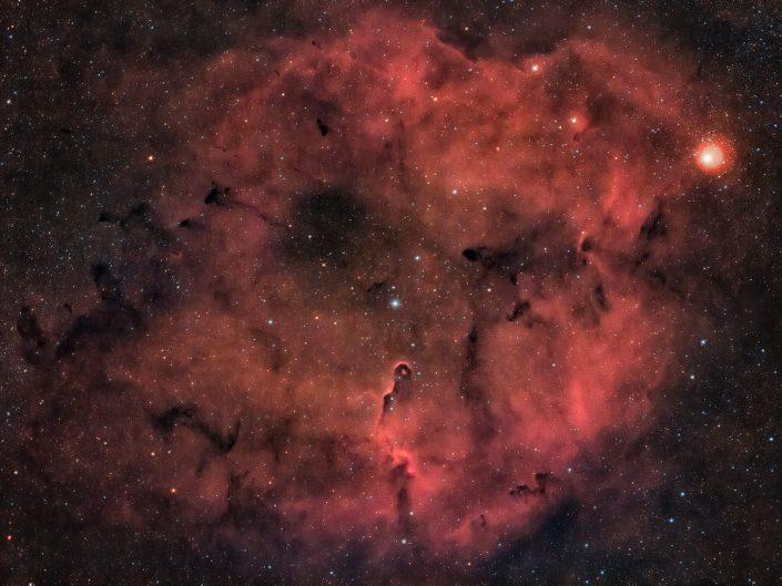 A circa 3000 anni luce dalla Terra, nella costellazione del Cefeo, si trova la nebulosa Proboscide d'elefante. Fotografia con rifrattore apocromatico Tecnosky