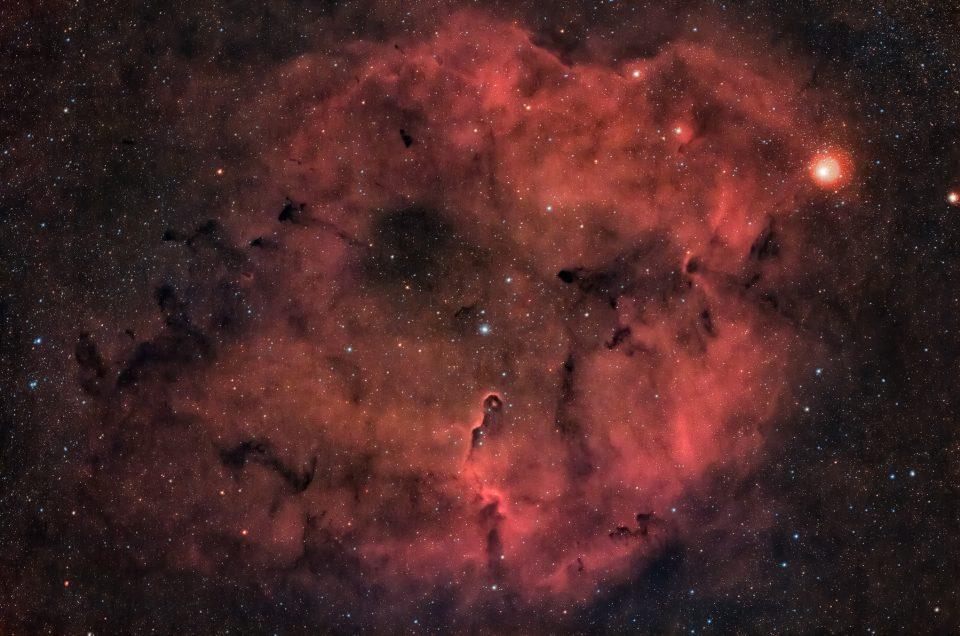 A circa 3000 anni luce dalla Terra, nella costellazione del Cefeo, si trova la nebulosa Proboscide d'elefante. Fotografia con rifrattore apocromatico Tecnosky Lo spettro elettromagnetico in fotografia