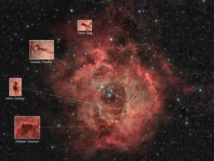 Nella nebulosa Rosetta ci sono Globuli di Bok con forme simili ad animali ed era da qualche anno che aspettavo l'occasione di fotografarla per poter realizzare questo piccolo zoo spaziale
