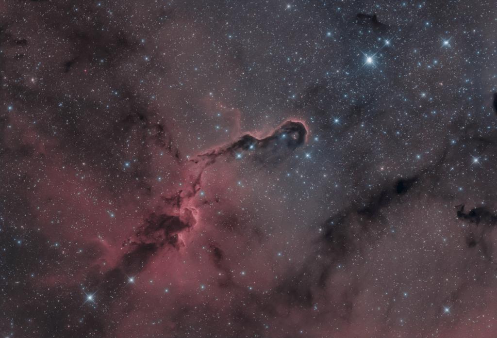nebulosa Proboscide di Elefante IC 1396 astrofotografia