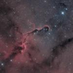 nebulosa Proboscide di Elefante IC 1396 astrofotografia eaf focuser zwo ZWO ASI 294 MC Pro Recensione