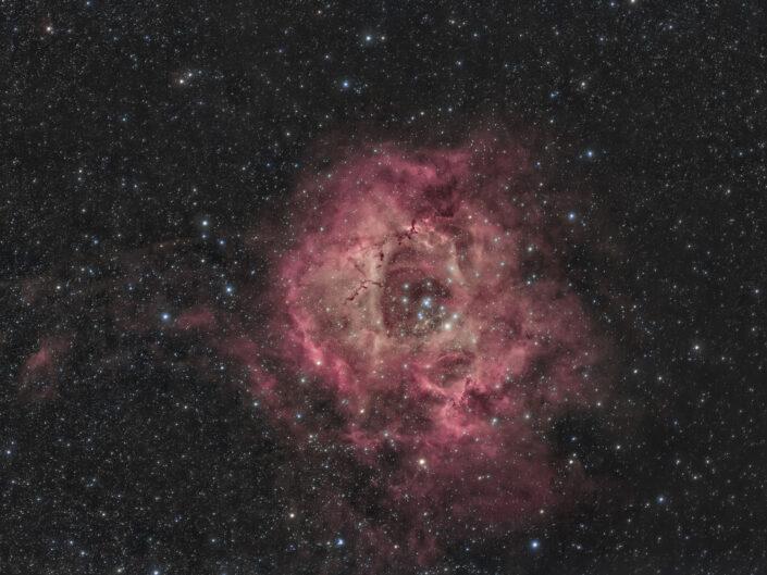 Nebulosa Rosetta NGC 2237 o C 49