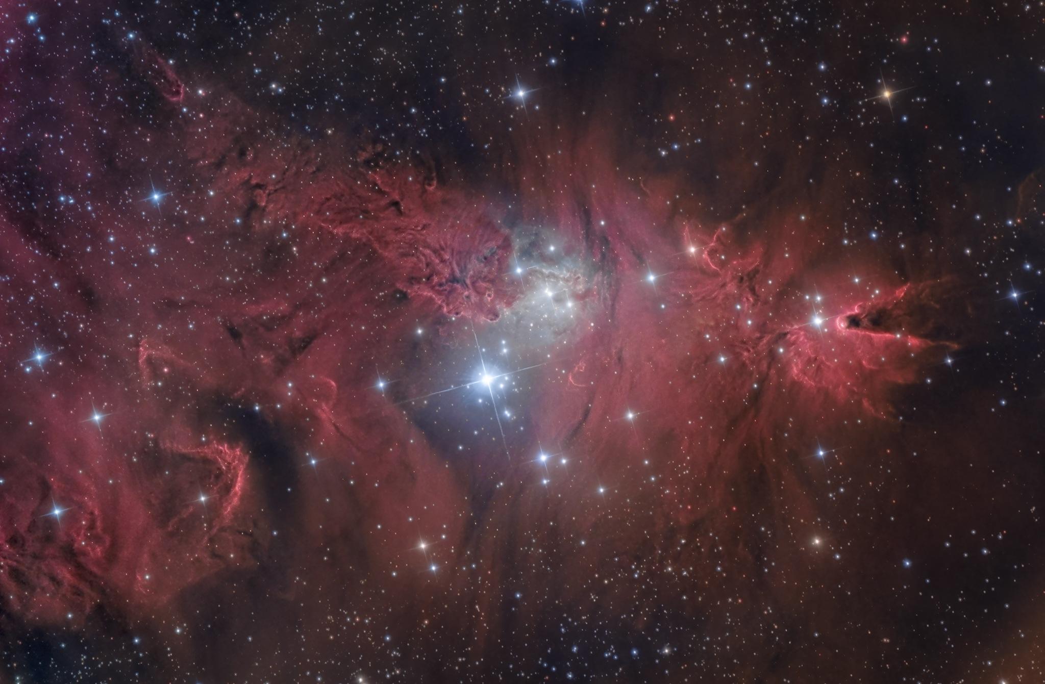 Nebulosa Cono NGC 2264 nebulosa Pelliccia di Volpe e Alberto di Natale astrofotografia