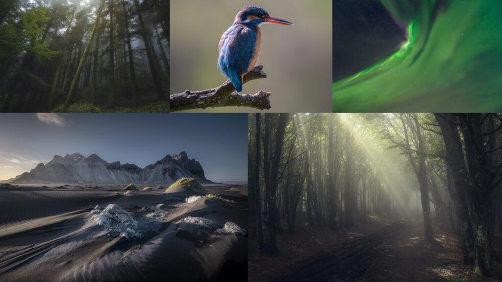 Portfolio Luca Fornaciari Astrofotografia e Natura