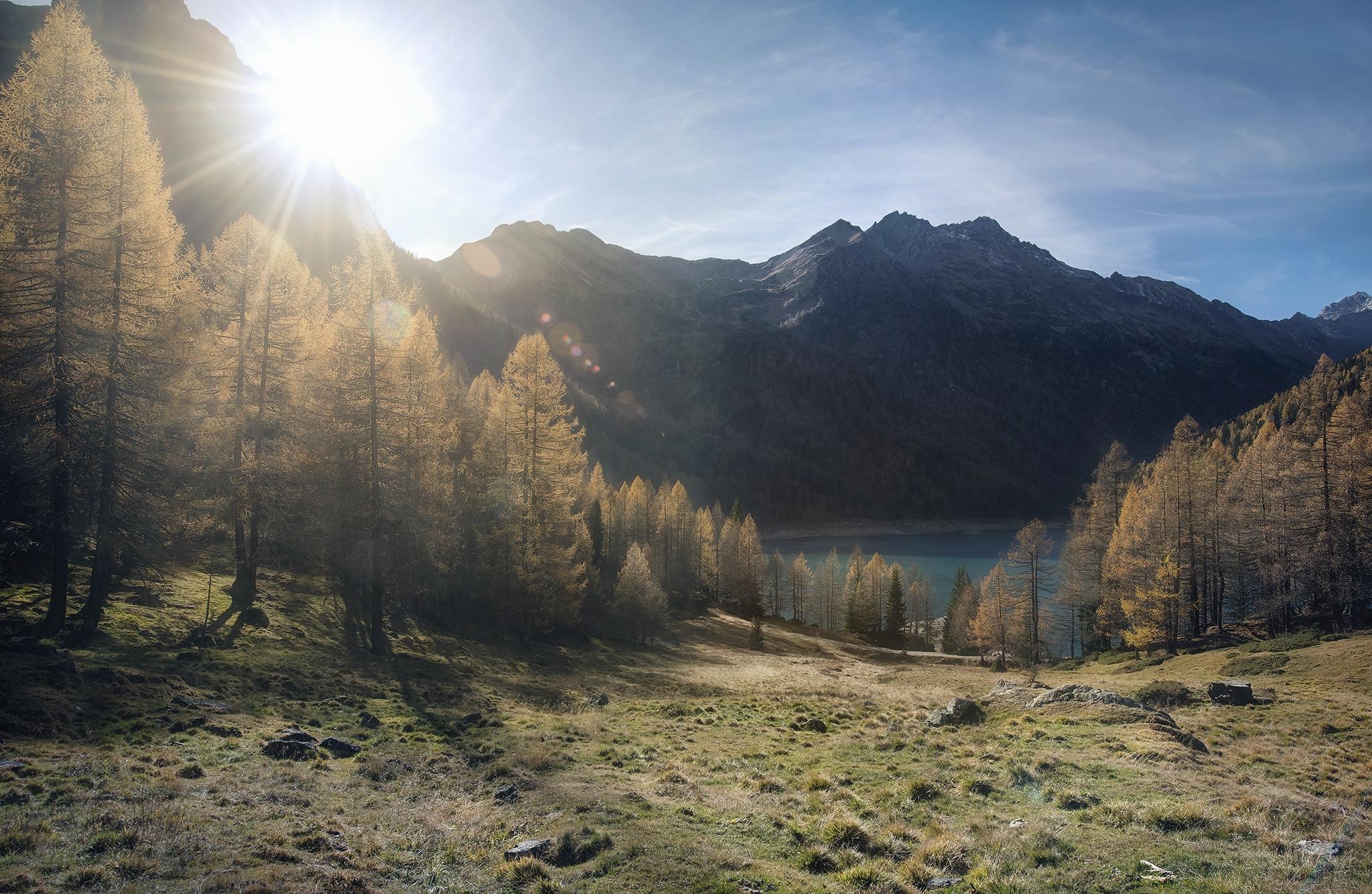 foresta montagna elaborazione tutorial fotoritocco trattamento sviluppo photoshop montagne dark dodge burn
