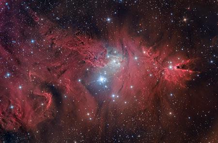 luca fornaciari fotografia Nebulosa Cono e Alberto di Natale astrofotografia