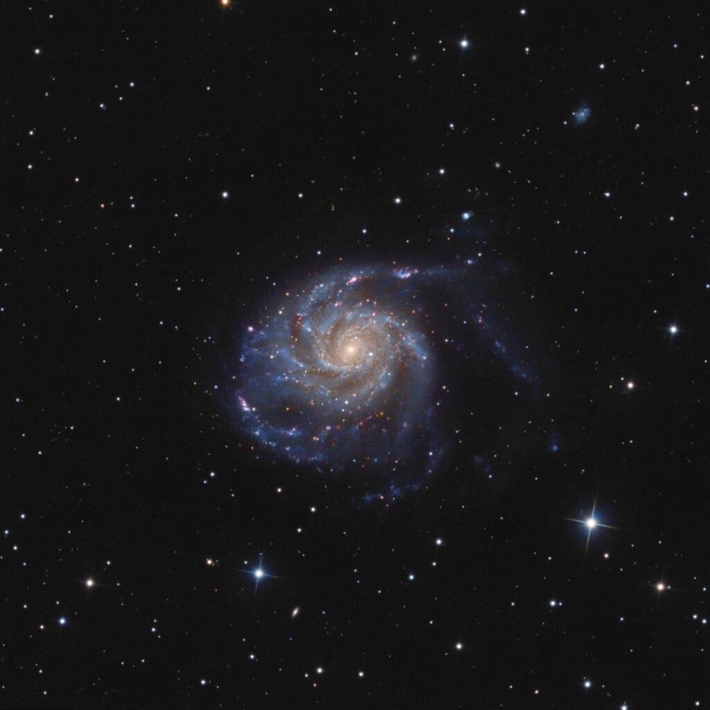 Galassia M 101 astrofotografia