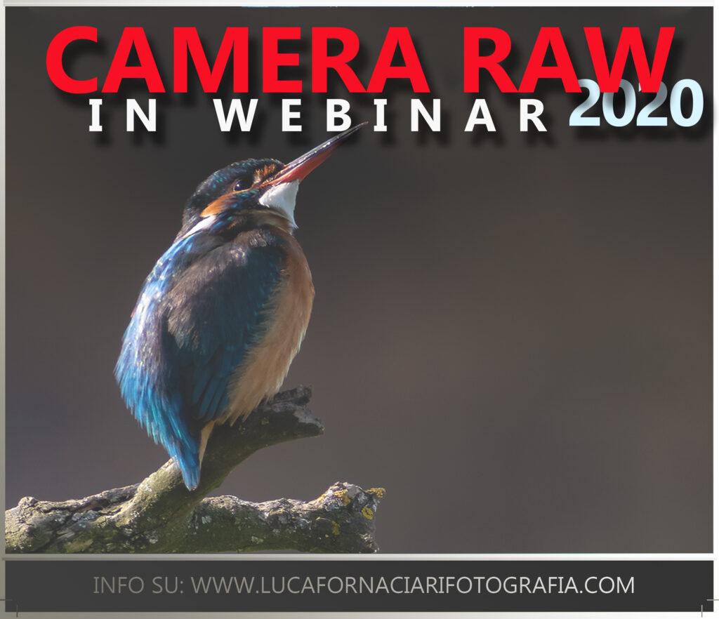Corsi webinar software Adobe e Pixinsight lightroom lezioni di camera raw per principianti
