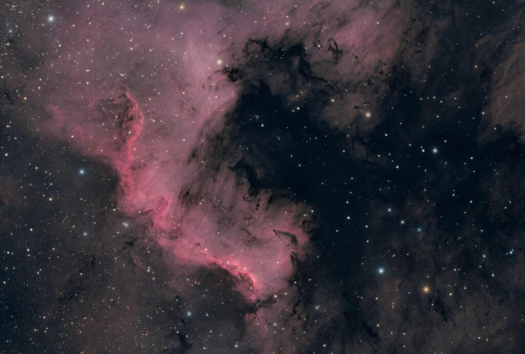 Nebulosa Muro del Cigno parte della Nebulosa Nord America NGC 7000 o C 20 astrofotografia