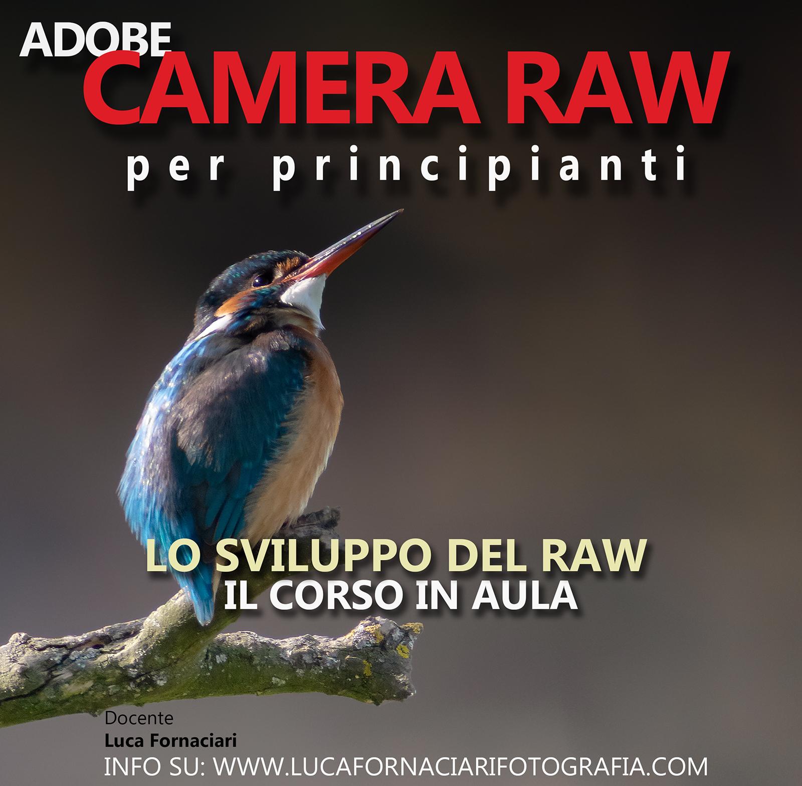 Camera Raw lo sviluppo del negativo digitale corso guida lezione lezioni scuola modena planetario fotografia
