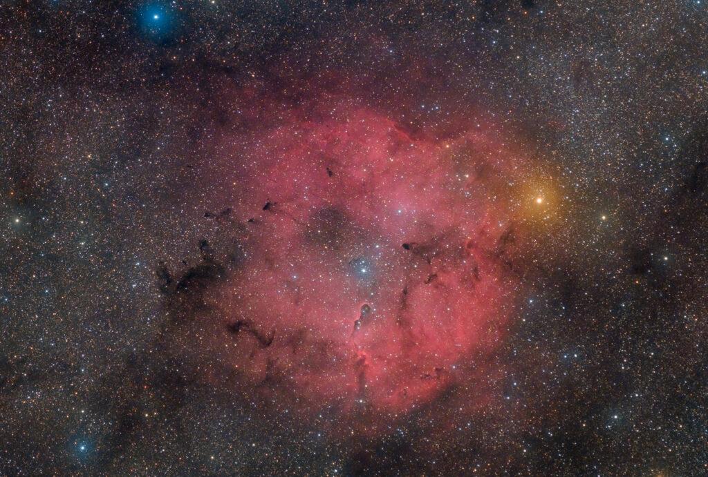 Astrofotografia sulla Nebulosa Proboscide d'Elefante e sull'ammasso TR37 Nebulosa Proboscide di Elefante IC 1396 - 50 minuti con Askar ACL200 APO 50mm F/4.0 e ZWO ASI 2400 in banda larga e 300 minuti di H-Alpha da 3nm con ASI 294MM