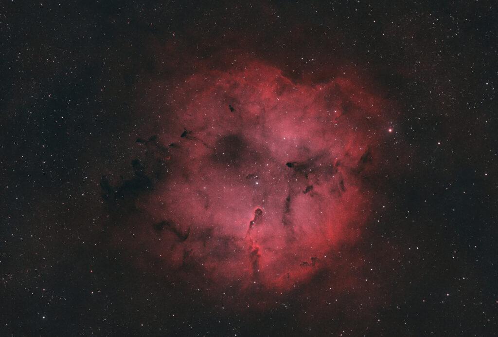 Astrofotografia sulla Nebulosa Proboscide d'Elefante e sull'ammasso TR37 Nebulosa Proboscide di Elefante IC 1396 Bicolor HOO con H-Alpha e Oiii Antlia da 3nm e Askar ACL200 APO 50mm F/4.0 e ASI 294MM