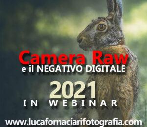 Camera Raw: sviluppo e comprensione del negativo digitale