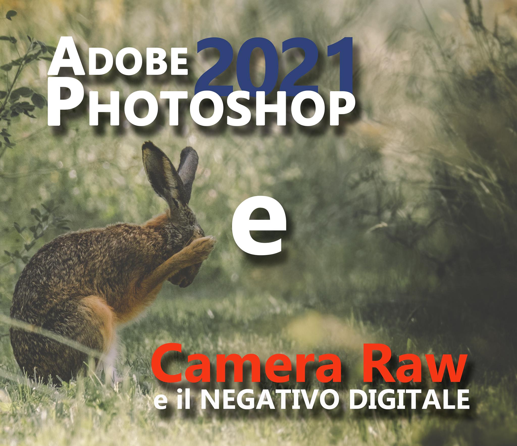 Photoshop e Camera Raw in pratica: il corso per principianti